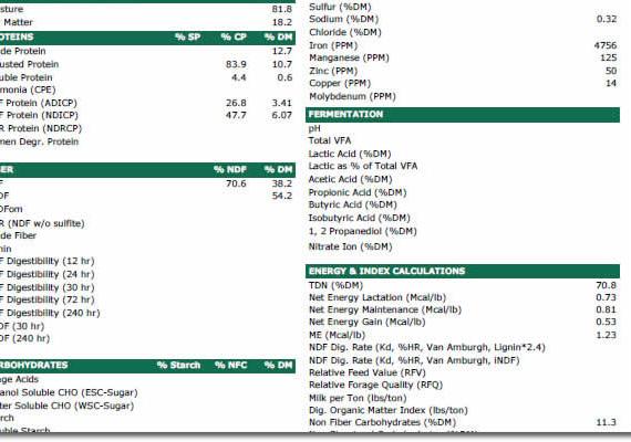 Providing product analysis reports.